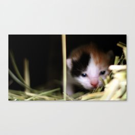 First view of her world Canvas Print