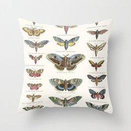 Vintage Moth Chart Throw Pillow