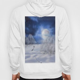 Winter Dreams Hoody