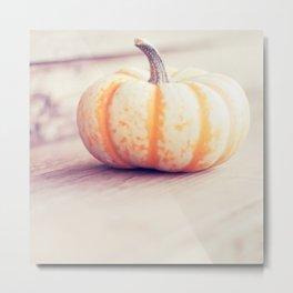 Little Pumpkin Metal Print