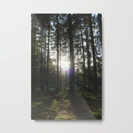 They Grow Tall Here Metal Print