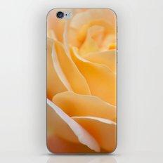 alpine sunset iPhone & iPod Skin