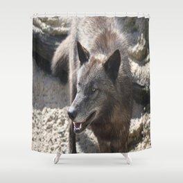 Beo Wolf Shower Curtain