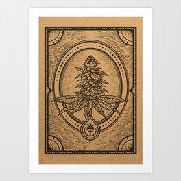 Cannabis Inflorescence Art Print