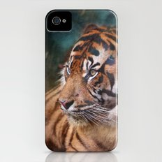 The mysterious eye of the tiger iPhone (4, 4s) Slim Case