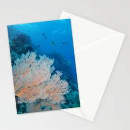 The coral looks beautiful from down here Stationery Cards