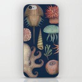 Aequoreus Vita iPhone Skin