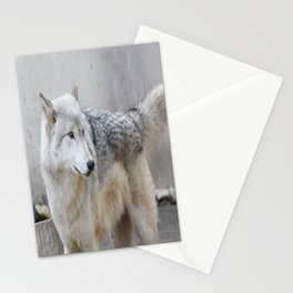 Gray Wolf 2 Stationery Cards