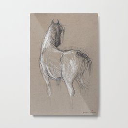 Horse (Old mare) Metal Print