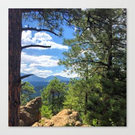 Panorama Point  Canvas Print