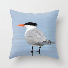 An Elegant Tern Throw Pillow