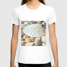 Sea Shells  -  Ocean, Sea, Nature T-shirt
