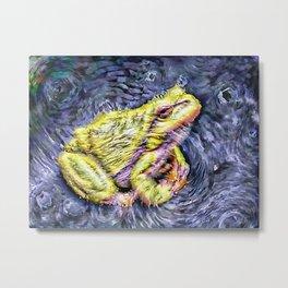 The InFocus Happy Frog Collection X Metal Print