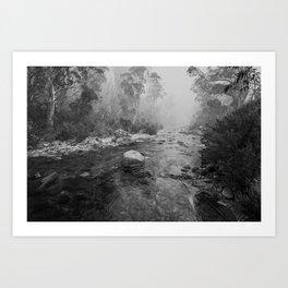 Smokey River Art Print