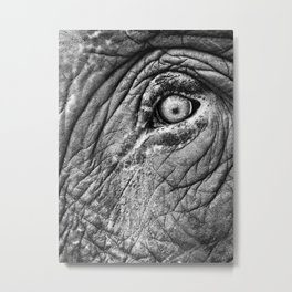 Elephant eye Metal Print