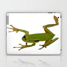 European Green Tree Frog Isolated Laptop & iPad Skin