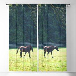 Summer Mares Blackout Curtain