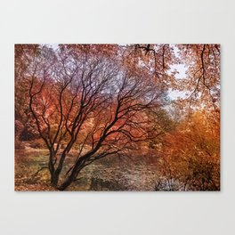 Mad colors of Autumn Canvas Print