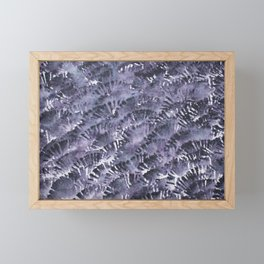 Fanning Feathers Framed Mini Art Print