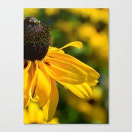 Piece of summer Canvas Print