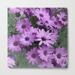 Lilac & Sage Color Purple Daisy Flowers Garden Metal Print