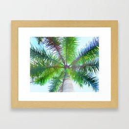 342 - Palm Tree Framed Art Print