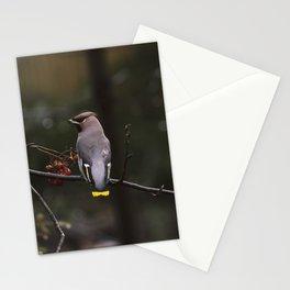 Bohemian waxwing on rowan tree branch Stationery Cards