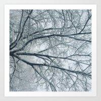 Winter & Trees Art Print