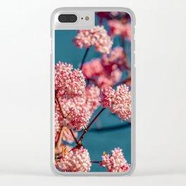 fragrant snowball viburnum Clear iPhone Case