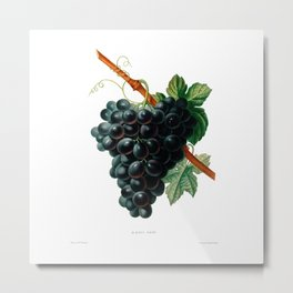 Black Grapes Metal Print
