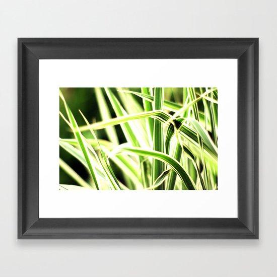 Among The Grasses Framed Art Print