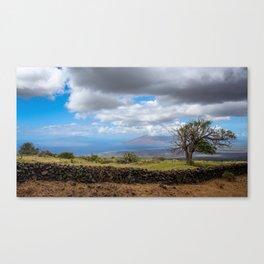 West Maui 2 Canvas Print