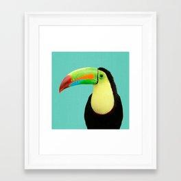 Toucan Bird - Blue Framed Art Print