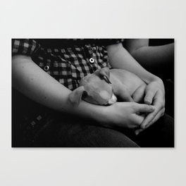 Rest Canvas Print