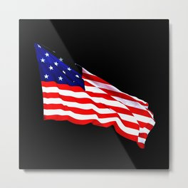 Waving Flag Metal Print