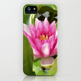 water lily XI iPhone Case