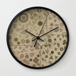 Diatom Design Wall Clock