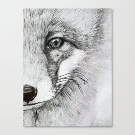 Eye of a Fox Canvas Print