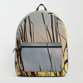 Wonderful sunset with teasel Backpack