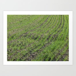 Tractor plowed field and arable land Art Print
