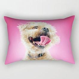 Super Pets Series 1 - Super Cosmo Rectangular Pillow