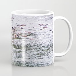 Looking for Salmon Coffee Mug
