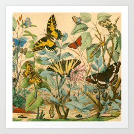 Garden Insects Art Print