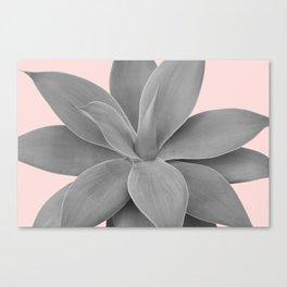Gray Blush Agave Romance #1 #tropical #decor #art #society6 Canvas Print