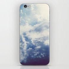 Beginning iPhone & iPod Skin