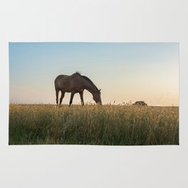 Grazing at Sunset Rug