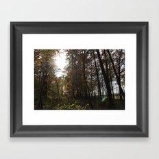 Fall Backyard Framed Art Print