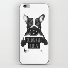 Rebel dog iPhone Skin
