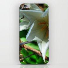 Flower - HDR iPhone & iPod Skin
