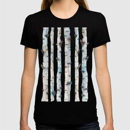 Birch Tree collab. with @rodrigomffonseca T-shirt